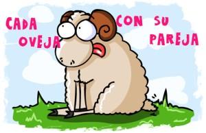 cada oveja