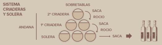 criaderas_brandy_es